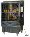 Охладитель воздуха Master BC 220 в Ростове-на-Дону